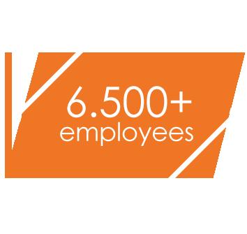 6500+ employees